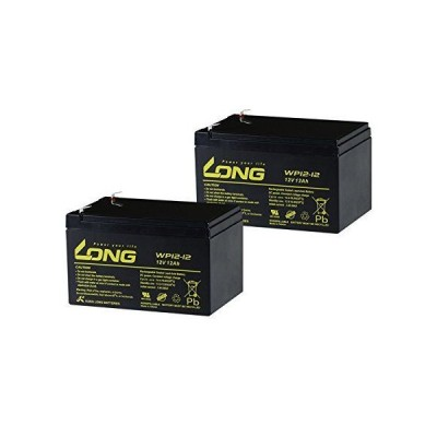 12V12Ah UPS用バッテリー WP12-12 2個セット