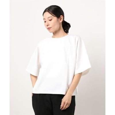 tシャツ Tシャツ ロイヤルキールポンチビッグドルマンT