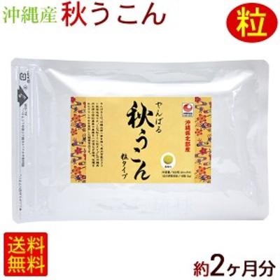 やんばる 秋ウコン 500粒×2袋 【メール便】 /秋うこん粒 沖縄産 国産