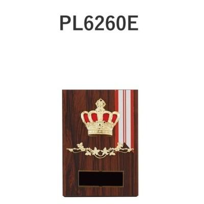 楯 PL6260E 14×10cm 文字入れ無料