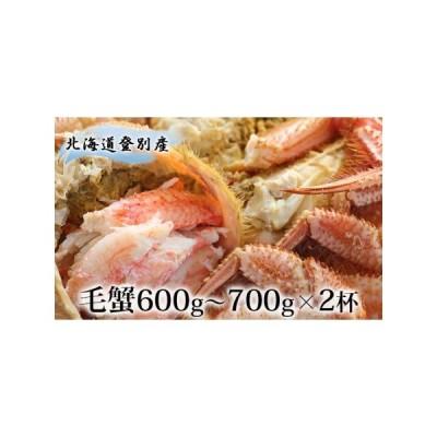 ふるさと納税 北海道登別産 旬の毛蟹600g〜700g×2杯 北海道登別市