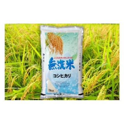 令和2年産茨城コシヒカリ無洗米5kg (米)