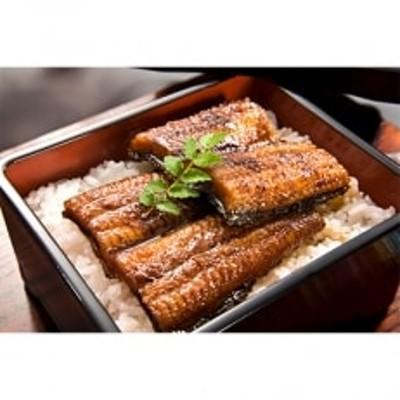 【宮崎県佐土原産】和匠鰻の蒲焼カット10パックセット