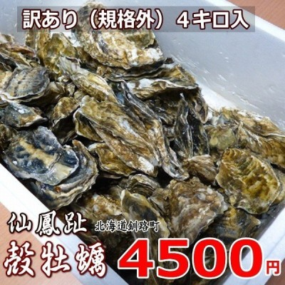 「訳あり4kg詰」生牡蠣 釧路町仙鳳趾産 約70個入