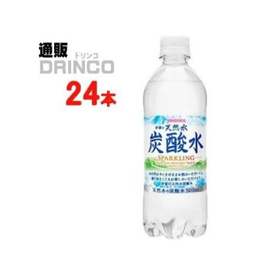 炭酸 伊賀の天然水 炭酸水 500ml ペットボトル 24 本 ( 24 本 × 1 ケース ) サンガリア
