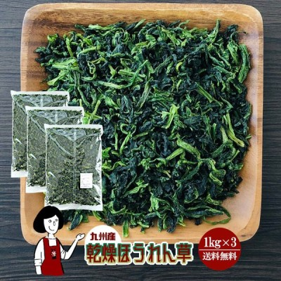 九州産 乾燥ほうれん草 1kg×3