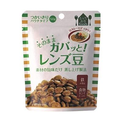 トーヨーフーズ そのままガバッと!  レンズ豆(パウチ)×10個