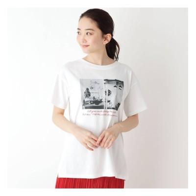 【ピンクアドベ/pink adobe】 【M-L】グラフィックプリント半袖Tシャツ