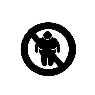 "No Fat People Allowed Funny 6?""ビニールステッカー車デカール ブラック SP-00288-B"