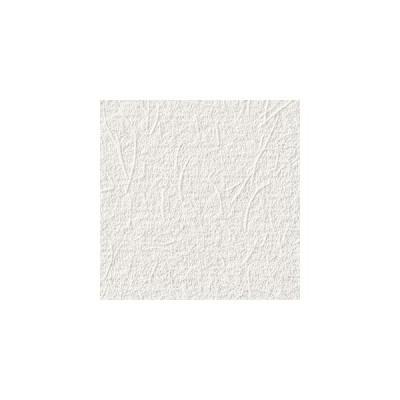 サンゲツ 壁紙 ファイン FE6252 92cm 1m長 糊なし