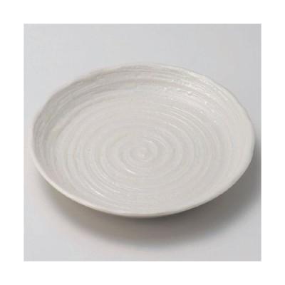 丸皿 粉引渦8.0皿 高さ28mm×口径:244/業務用/新品