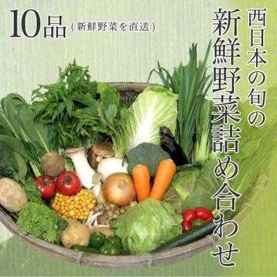 【送料無料】西日本産の旬の新鮮野菜詰め合わせ 10品 新鮮野菜を直送野菜セット 野菜詰め合わせ 新鮮野菜 旬の野菜 季節の野菜 やさい 詰め合わせ セット お取り