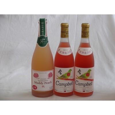 ワインセット 国産ワイン3本セット プレミアムキャンベルロゼ(キャンベルアーリ)×2本 マディピーチ(桃)×1本  (北海道 山