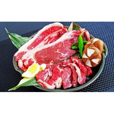 北海道湧別産 ゆうべつ牛ステーキ・焼き肉セットB