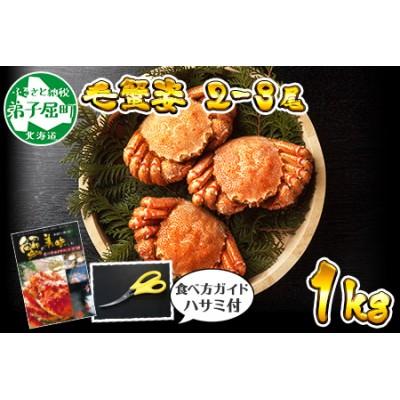 412.北海道産 ボイル毛蟹姿 2-3尾 計1kg 食べ方ガイド・専用ハサミ付 カニ かに 蟹 海鮮 北海道