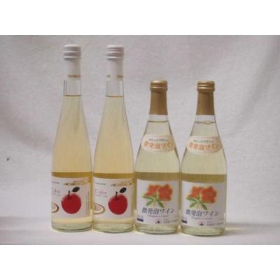 国産フルーツ甘口ワイン4本セット Cider 青森弘前産りんご使用(京都府)2本 北海道微発泡ナイアガラ2本 500ml×4本