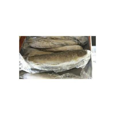 国産(愛知県産) 冷凍いわな1kg(14尾)x10枚(枚2150円税別)業務用 ヤヨイ