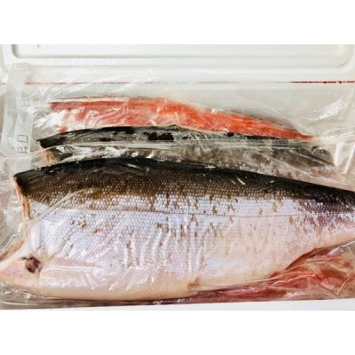 紅鮭  半身1枚 【天然・甘塩 】お弁当・おにぎり・お茶漬け・ムニエルなどでお使いいただけます【冷凍便】