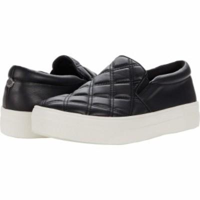 スティーブ マデン Steve Madden レディース スニーカー シューズ・靴 Gills-Q Sneaker Black