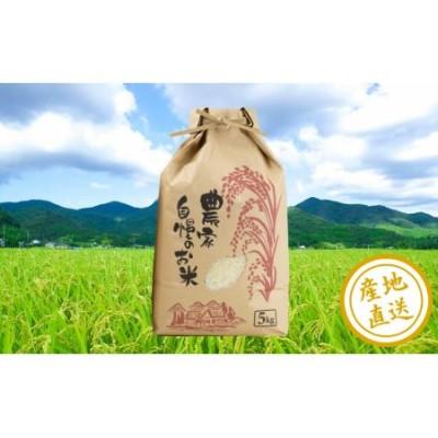 【鹿児島県南さつま市産】農家自慢のお米 5kg