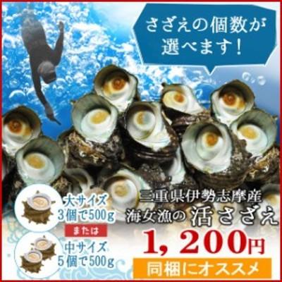 三重県 伊勢志摩産 海女漁 天然 活 さざえ 500g サザエのサイズと個数が選べます お中元 ギフト