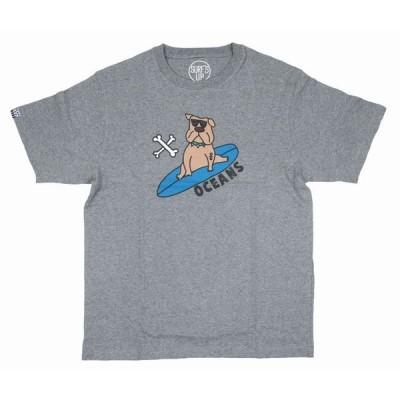 半袖 Tシャツ メンズ ハワイアン雑貨 ハワイアン 雑貨 SURF'S UP (メンズ グレー) 202SU1ST101 サーフズ アップ サーフブランド
