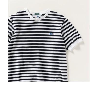 SHIPS any×LACOSTE: 別注 PIQUE 半袖リブ クルーネックTシャツ