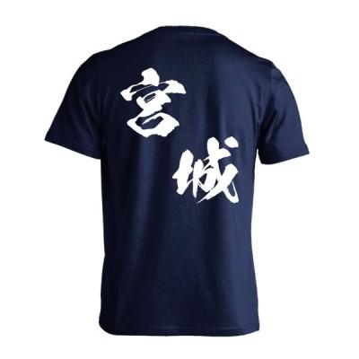 ハンドボール Tシャツ 都道府県デザイン 宮城 闘龍書体 斜め書き 標準サイズ XS-XL 全16色 ドライ プロテッジ PROTEGGi