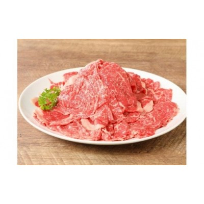 K01_0009 <宮崎牛 和牛 切り落とし500g>
