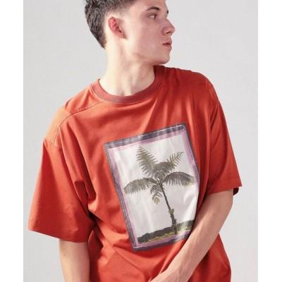 TOMORROWLAND/トゥモローランド CABaN Costarica アートTシャツ 45 キャメル M