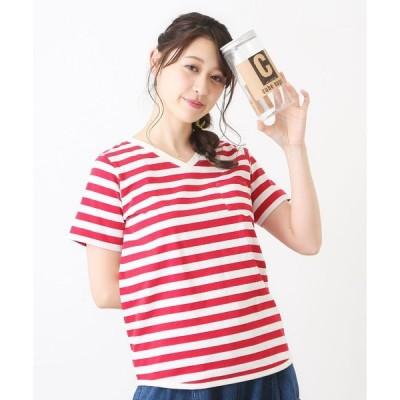 tシャツ Tシャツ ボトル入り USコットン 14/-空紡糸天竺 ボーダーVネックTシャツ  ボトルTee