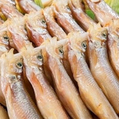 【北海道】干物 焼き魚 ししゃも 雄雌 40尾 370