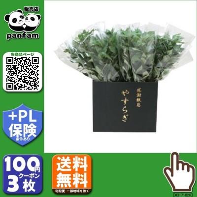 送料無料|ニューホンコン造花 シキミ(ラップ入・展示箱付)グリーン30本入  142501|b03
