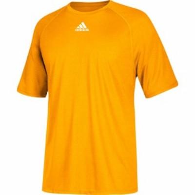 アディダス adidas メンズ フィットネス・トレーニング トップス Team Climalite Short Sleeve T-Shirt Collegiate Gold