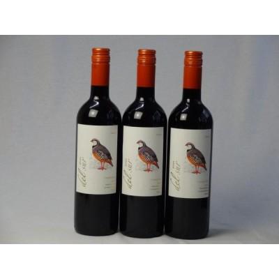 ワインセット 3本セット ミディアムボディ赤ワイン デルスール カルメネール(チリ) 750ml×3本