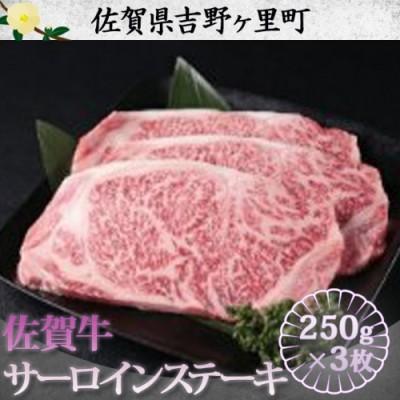 佐賀牛サーロインステーキ750g(250g×3枚)【plan】[FBF004]