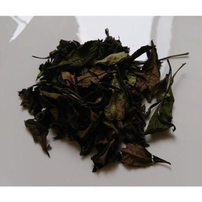 白茶(2020年)在来 農薬・肥料不使用 加茂自然農園のお茶
