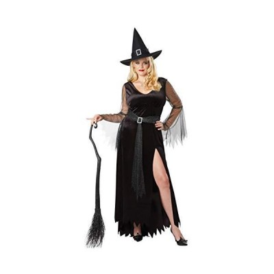 California Costumes Women's Size Rich Witch Plus Costume, black/silver, 3X Large[並行輸入品]