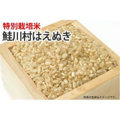 特別栽培米・鮭川村はえぬき【玄米】1kg