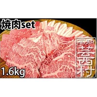 南国高知の焼肉三昧セット1.6kg