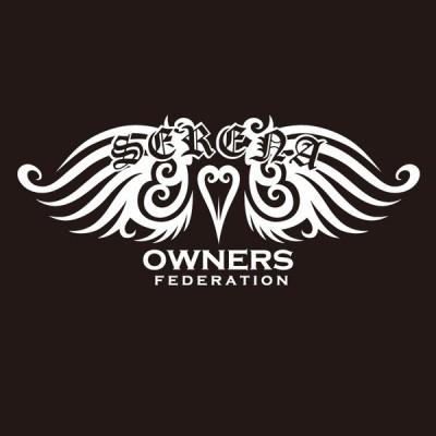 カッティングステッカー 日産(NISSAN)セレナ SERENA tribewing1 車 カー ステッカー アクセサリー シール ガラス[◆]