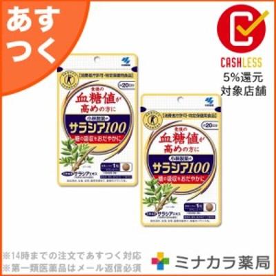(2個セット)サラシア100 小林製薬 60粒×2個 血糖値 コレステロール (特定保健用食品) 送料無料
