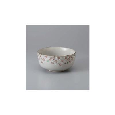 和食器 丼 赤絵花しだれ5.0多用鉢 どんぶり 食器 陶器 ボウル