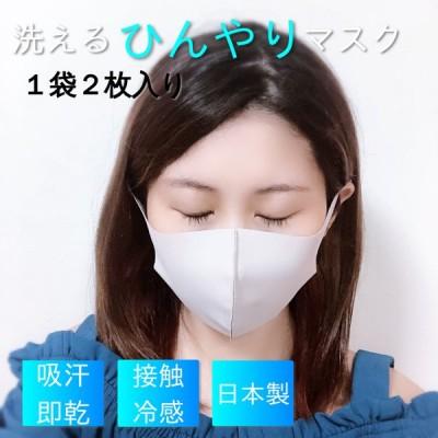 東レ シェルタリングドライ 冷感日本製マスク 2枚入り