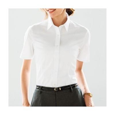 レディースファッション レディース トップス 形態安定2枚組レギュラーカラーシャツ(半袖)(洗濯機OK・S〜3L) S M L LL|2663-474612