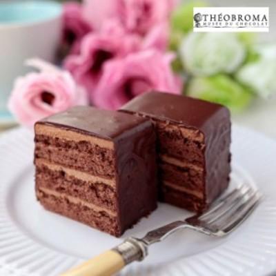送料無料 テオブロマ ケークショコラ 2個セット / スイーツ 洋菓子 お取り寄せ グルメ 特産品