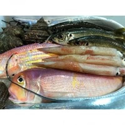 竹中水産の「豪華鮮魚ボックス約4キロ」!【H22-234】