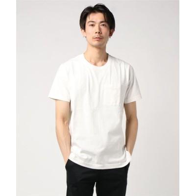 tシャツ Tシャツ Roy