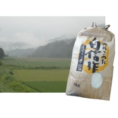 上平農園 田子町産あきたこまち5kg(精米)「青森県土の匠認定」
