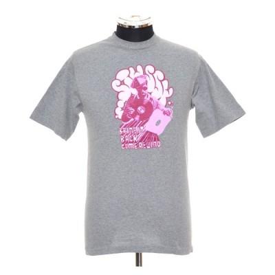 STUSSY ステューシー プリントTシャツ ショートスリーブ 半袖 サイズS グレー